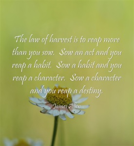 The-law-of-harvest-is-to